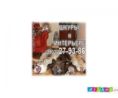 Сибирская Тайга. Изготовление чучел животных. Купить чучела птиц и зверей.