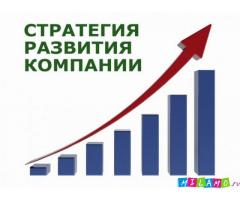 Разработка стратегии предприятия